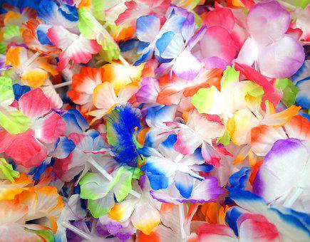 Deco, Flowers, Decoration, Colorful, Artificial Flowers