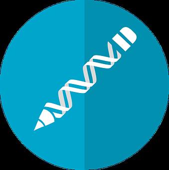 Gene Editing, Crispr, Dna Editing, Genetic Engineering