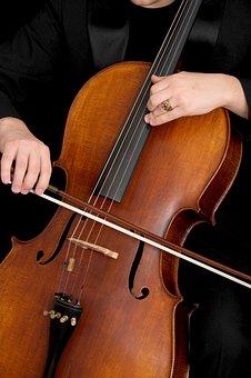 Cello, Musical Instrument, Instrument, Musical, Concert