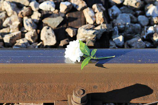 Stop Children Suicide, Tiny Fragile White Rose, Railway
