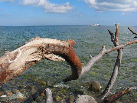 Baltic Sea, Rügen, Dead Wood, Coast, Bank, Beach, Ship