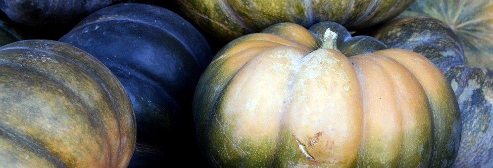 Pumpkin, Autumn, Thanksgiving, Decoration, Harvest