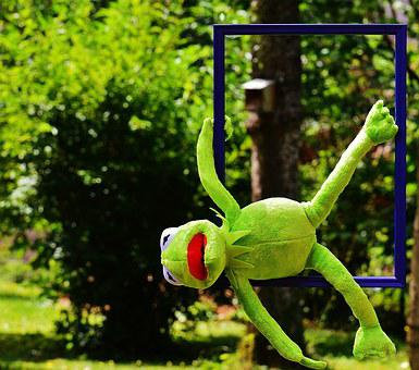Out Of The Ordinary, Kermit, Frog, Funny, Anders