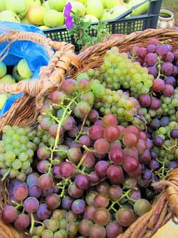 Grapes, Berry, A Bunch Of, Basket, Green, Purple