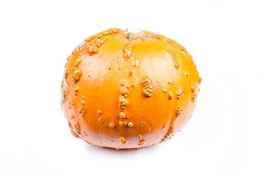 Pumpkin, Mini, Decorative, Market, Close-up, Isolated