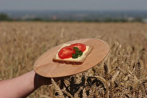 Bread, Grain, Cereals, Nutrition, Rye, Agriculture
