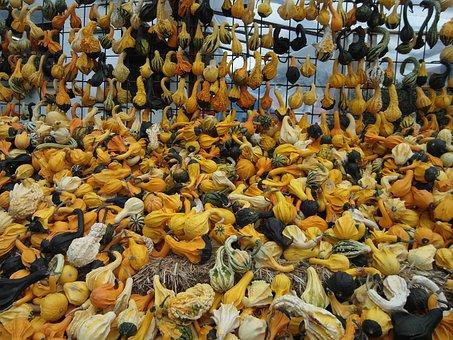 Decorative Pumpkins, Pumpkin, Yellow, Black, White