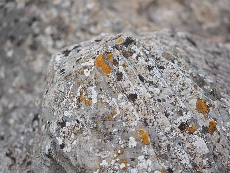 Rock, Limestone, Weave, Orange, Lichen