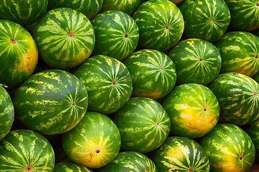 Melon, Fruit, Juicy, Healthy, Organic, Fresh, Nutrition