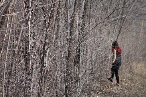 Lost, Way, Confusion, Wood, Path