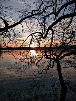 Sunset, Lake, Tree, Nature, Water, Evening, Landscape
