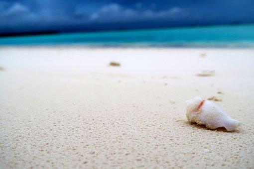 Summer, Blue, Nature, Ocean, Cloud, Colorful, Water