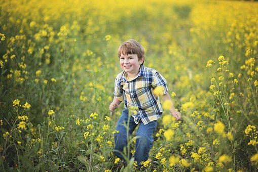 Mustard, Flowers, Boy, Yellow