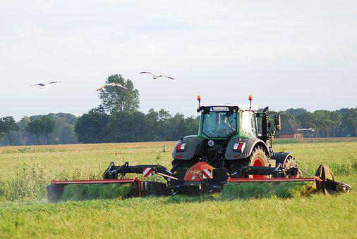 Agriculture, Farmer, Tractors, Fendt, Mow, Mower, Grass