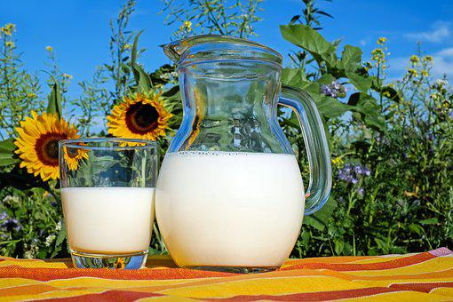 Milk, Glass, Frisch, Healthy, Drink, Food, Delicious