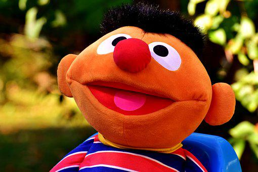 Plush Figure, Children, Toys, Ernie, Play, Funny
