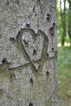 Herz, Symbol, Baum, Liebe, Liebesbotschaft, Sign