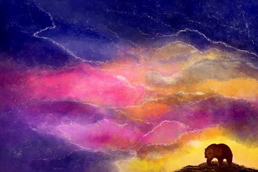 A Bear, The Sky, Night, Loneliness, Saturation
