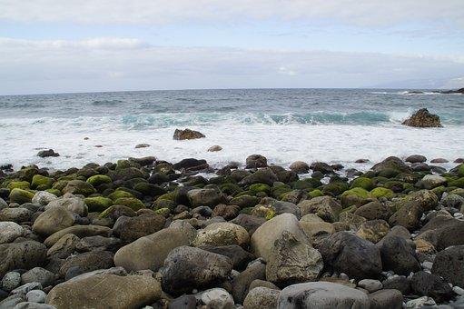 Stones, Bank, Shore Stones, Rock, Rocky, Surf, Bemoost