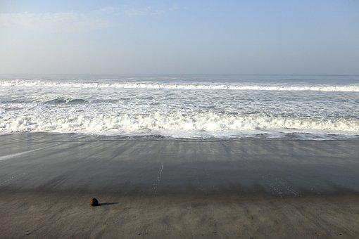 Coconut, Sea, Ocean, Sea Foam, Beach, Blue, Water