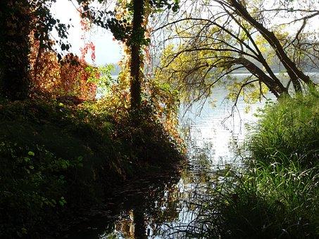 Lake, Bañolas, Banyoles, Trees, Nature, Landscapes
