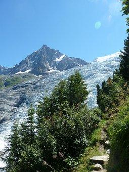 Glacier, Contrast, Vegetation, Aiguille Du Midi, Summer