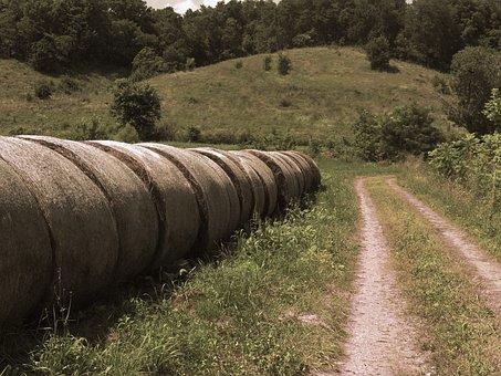 Hay, Bails, Photography, Farm, Field, Haystack, Nature