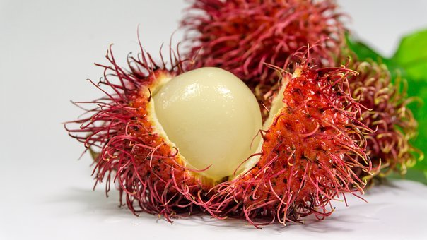 Rambutan, Fruit, Background, Fresh, White, Red, Food
