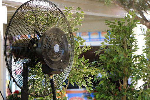 Fan, Hot, Cold, Air, Critter, Plant, Green, Black, Cool