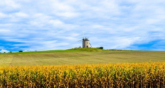 Mill, Mont Saint Michel, Clams, Landscape, Field