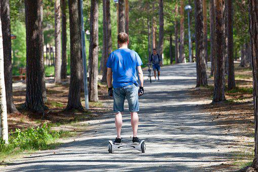 Segway, Two Wheels, Promenade, Nature, Transport