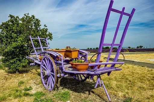 Provence, Valensole, Lavender, Haute Provence, Summer