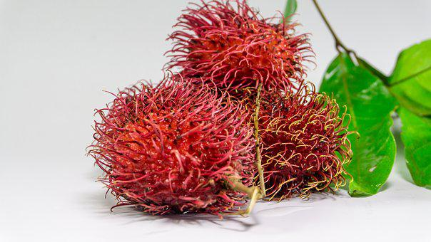 Rambutan, Fruit, Background, Fresh, White, Red, Food