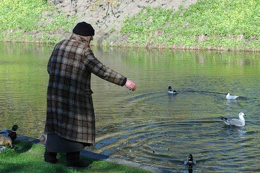 Old Lady, Feeding Ducks, Senior Citizen