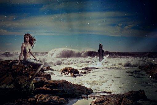Mermaid, Fairy Tales, Fantasy, Sea, Dolphin
