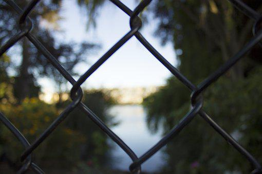 Nature, Fence, Exterior, Behind, Water, Sky, Tree, View