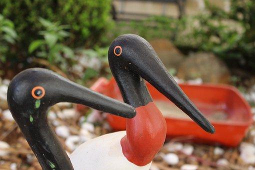 Focus, Garden, Sowers, Never Give Up, Bird
