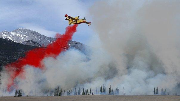 Forest Fire, Fire Fighting Aircraft, Fire, Aircraft