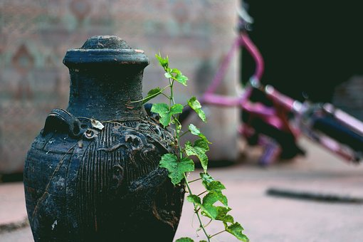 Vase, Leaves, Old, Green, Vintage, Leaf, Summer, Flower