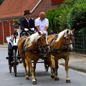 Wedding, Coach, Bride And Groom, Marry, Love