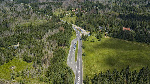 Resin, Road, Forest, Trees, Germany, Lower Saxony