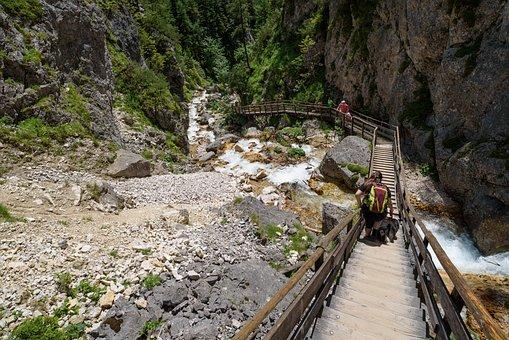 Hiking, Sidewalk, Away, Path, Gradually, Descent