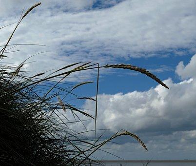 Dühne, Beach, North Sea, Sea, Duhnen, Summer, Sky