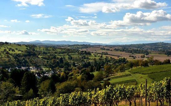 Kaiserstuhl, Landscape, Sky, Vines, Nature, Summer