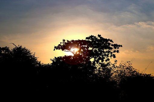 Sunset, Sunrise, Sun, Nature, Sky, Summer, Light