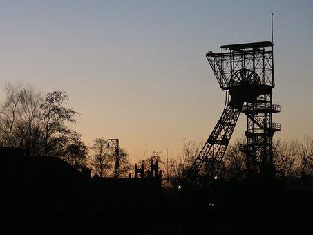 Bill, Evening, Sunset