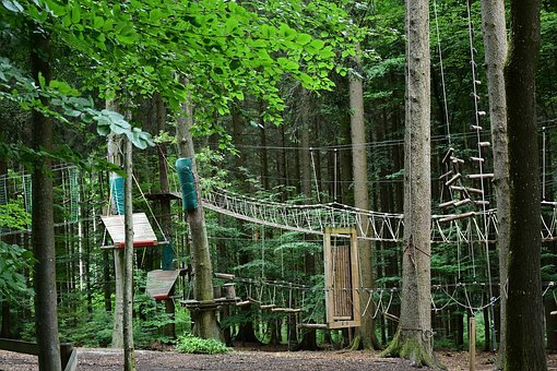 Climb, High Ropes Course, Climbing Garden