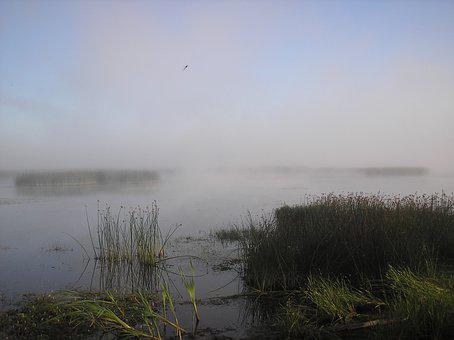 River, Fog, Beach, Nature, Landscape, Morning, Water