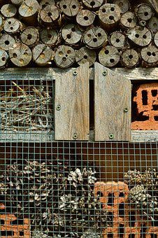 Insect Hotel, Wood, Perforated