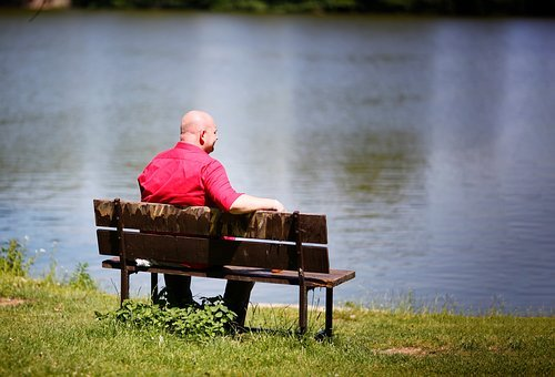 Man, Bench, Shirts, Red, Green, Water, Pond, Bald